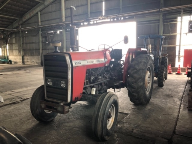 Massey Ferguson / MF-290 Stock No. TP11928801